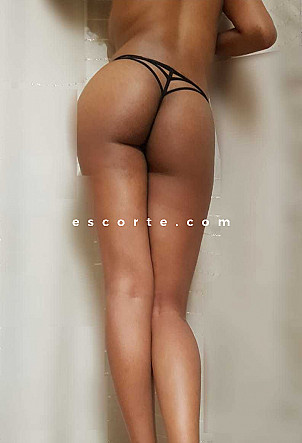 Danah31 - Girl escort Toulouse